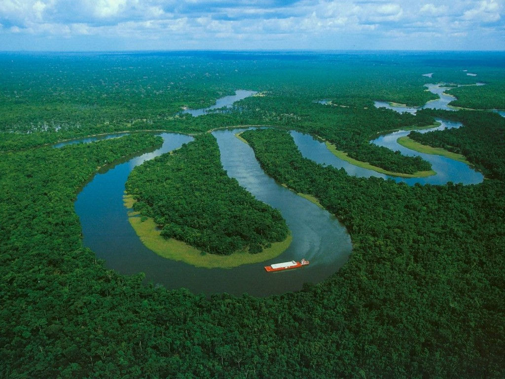 bresil-amazonie